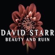 DAVID STARR|Americana/Folk Rock